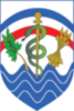 Regional Health Command Atlantic